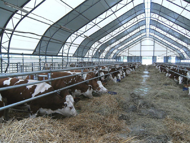 фото животноводческих ферм того чтобы